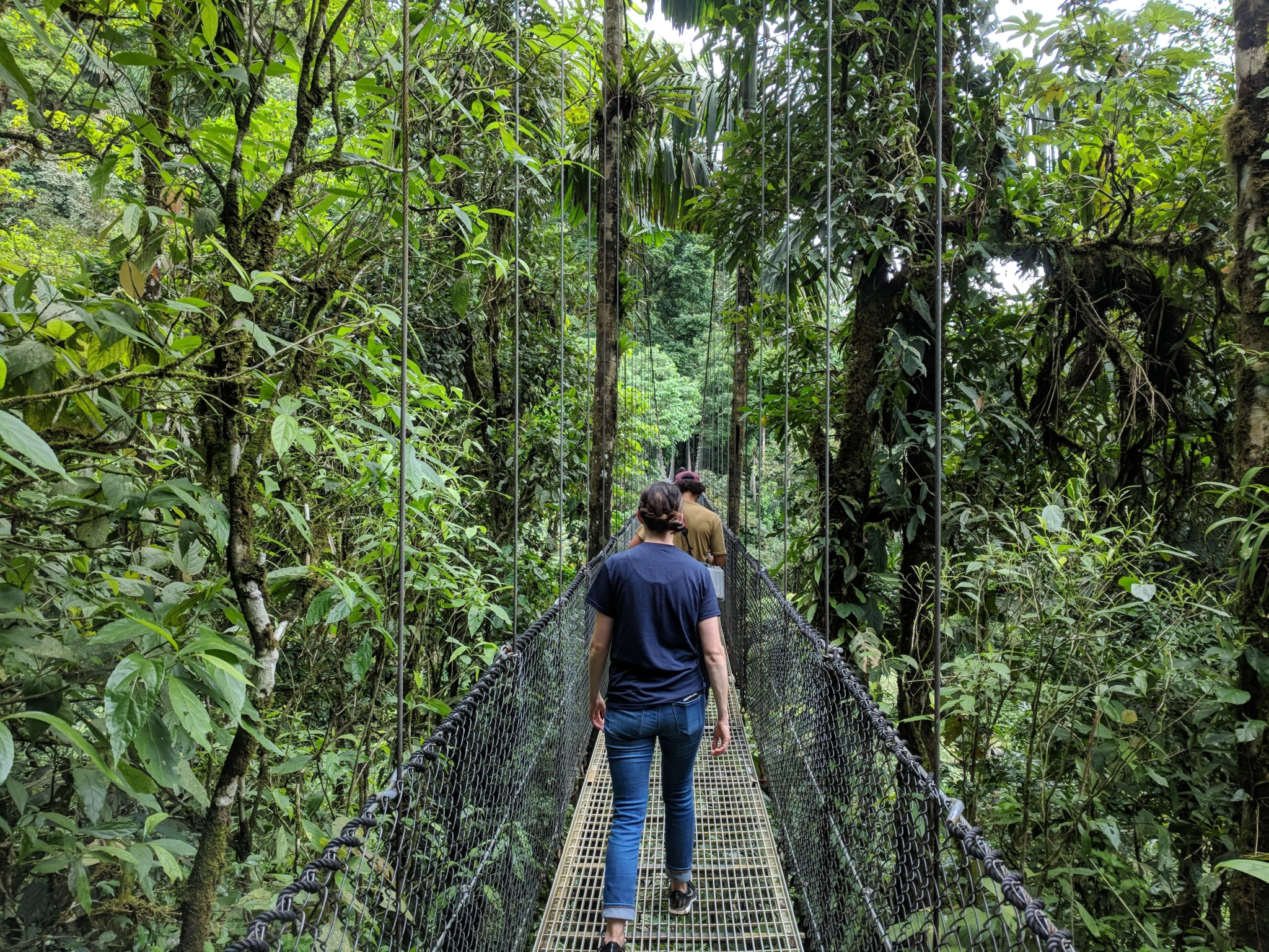 Hanging Bridge Treks Are Relatively Flat With A Few Moderate Inclines But Should Be Easily Completable For Travelers Of All Ages If The Adventure Becomes